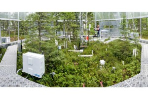 By controlling the temperature and the amount of carbon dioxide in the test chambers, scientists hope to learn how microbial communities, moss populations, various higher plant types and some insect groups respond.